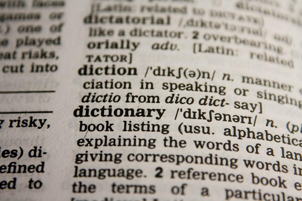 Microsoft Office Wörterbücher