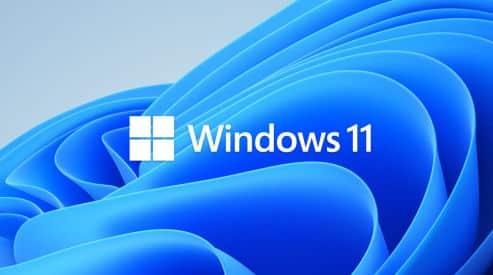 Fit für Windows 11?